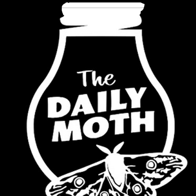 Daily Moth Logo